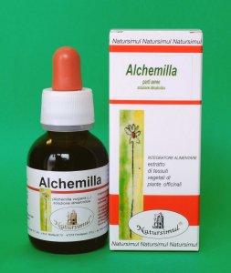 Alchemilla (Alchemilla vulgaris L.) S.I.