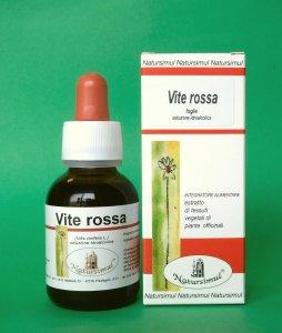Vite rossa (Vitis vinifera L.) foglie S.I.
