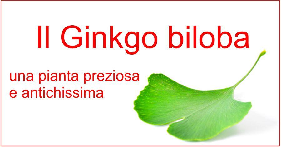 Il Ginkgo biloba, una pianta preziosa...