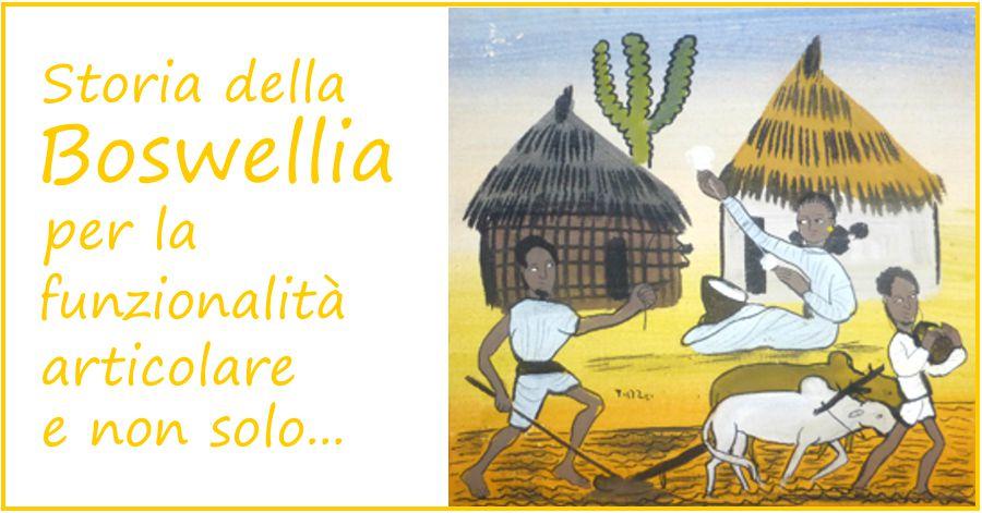 Storia della Boswellia